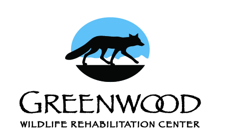 Greenwood Wildlife Rehabilitation Center Link
